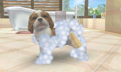 nintendogs cats 3ds review 5