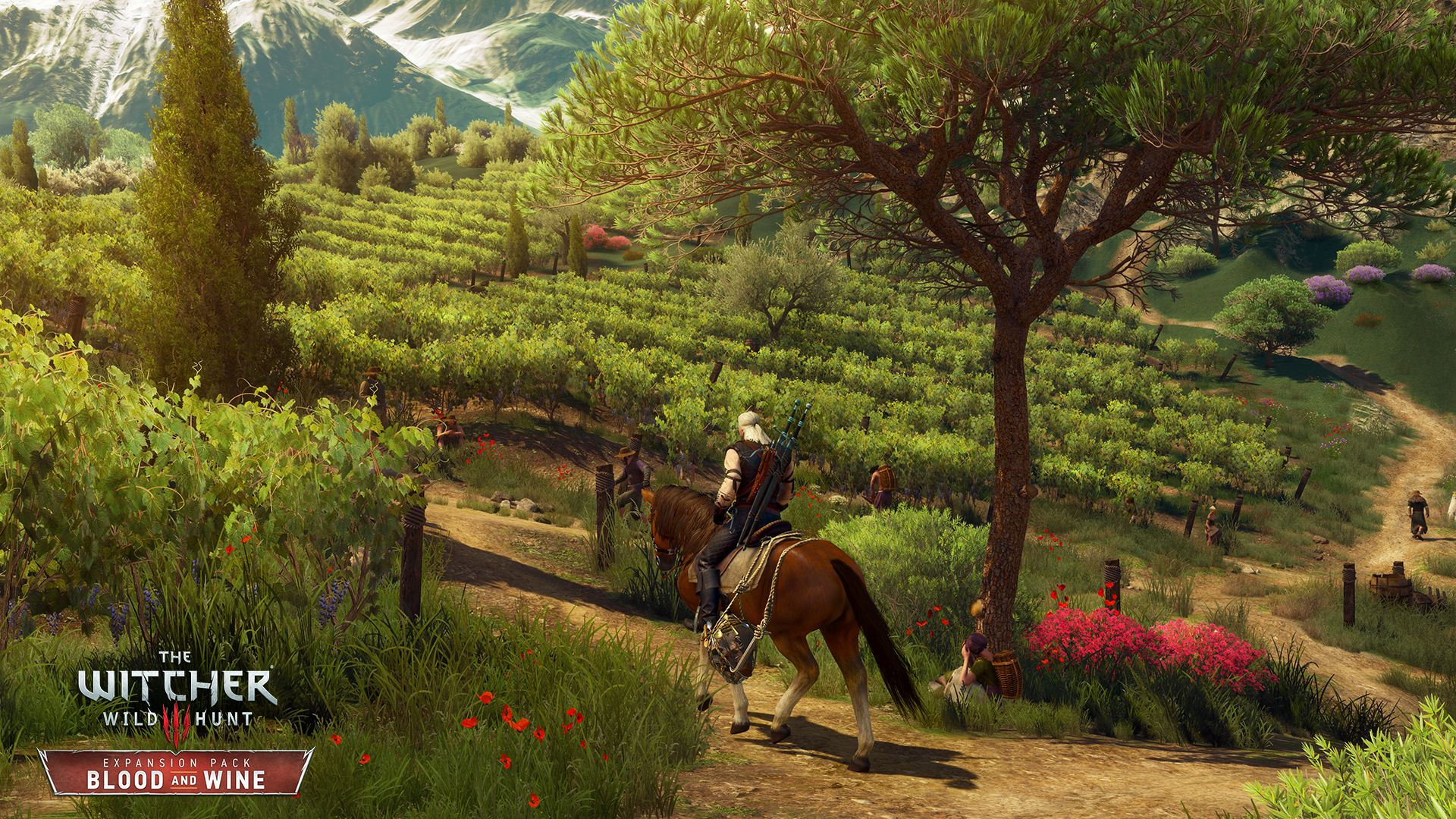 The Witcher 3: Blood and Wine The Witcher 3: Wild Hunt